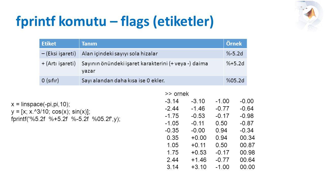 fprintf komutu – flags (etiketler)