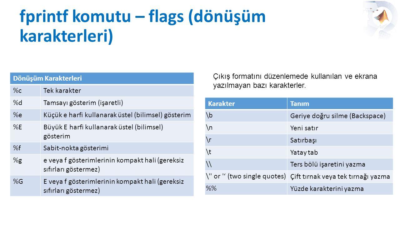 fprintf komutu – flags (dönüşüm karakterleri)