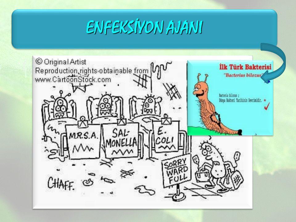 ENFEKSİYON AJANI
