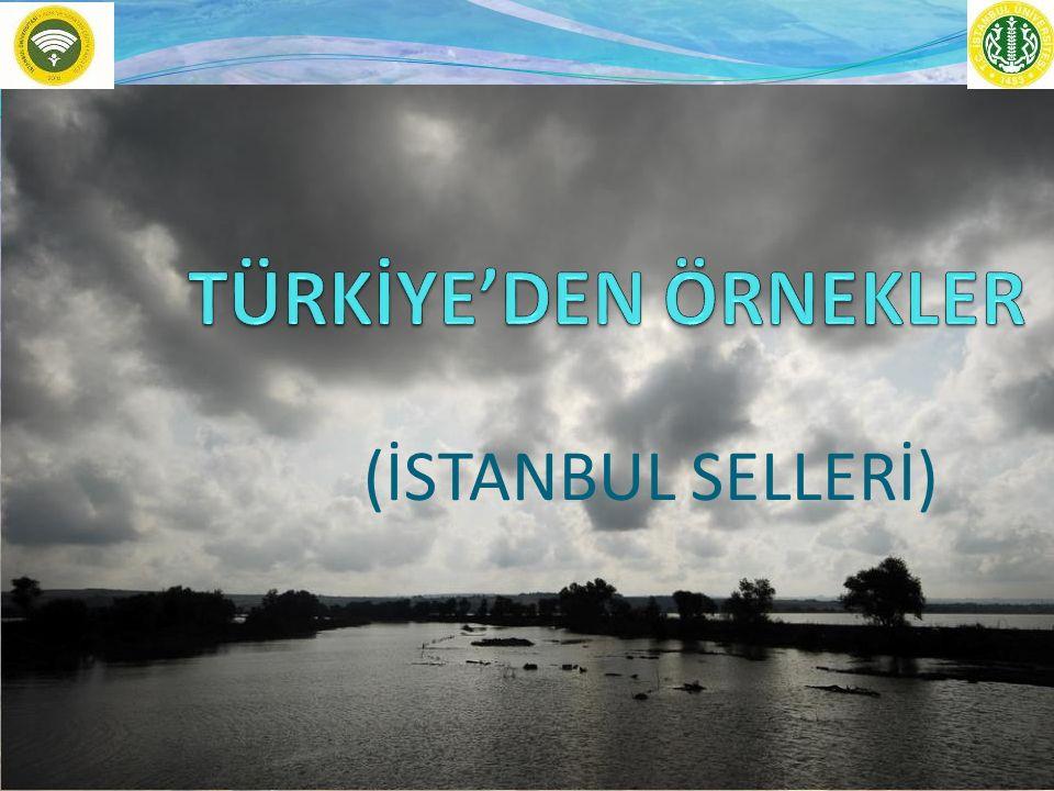 TÜRKİYE'DEN ÖRNEKLER (İSTANBUL SELLERİ)