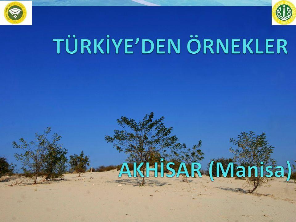 TÜRKİYE'DEN ÖRNEKLER AKHİSAR (Manisa)