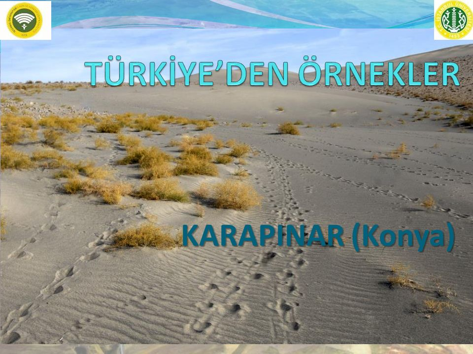 TÜRKİYE'DEN ÖRNEKLER KARAPINAR (Konya)