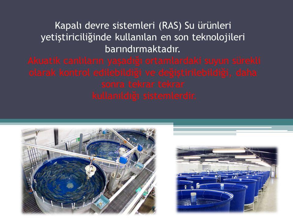 Kapalı devre sistemleri (RAS) Su ürünleri yetiştiriciliğinde kullanılan en son teknolojileri barındırmaktadır.