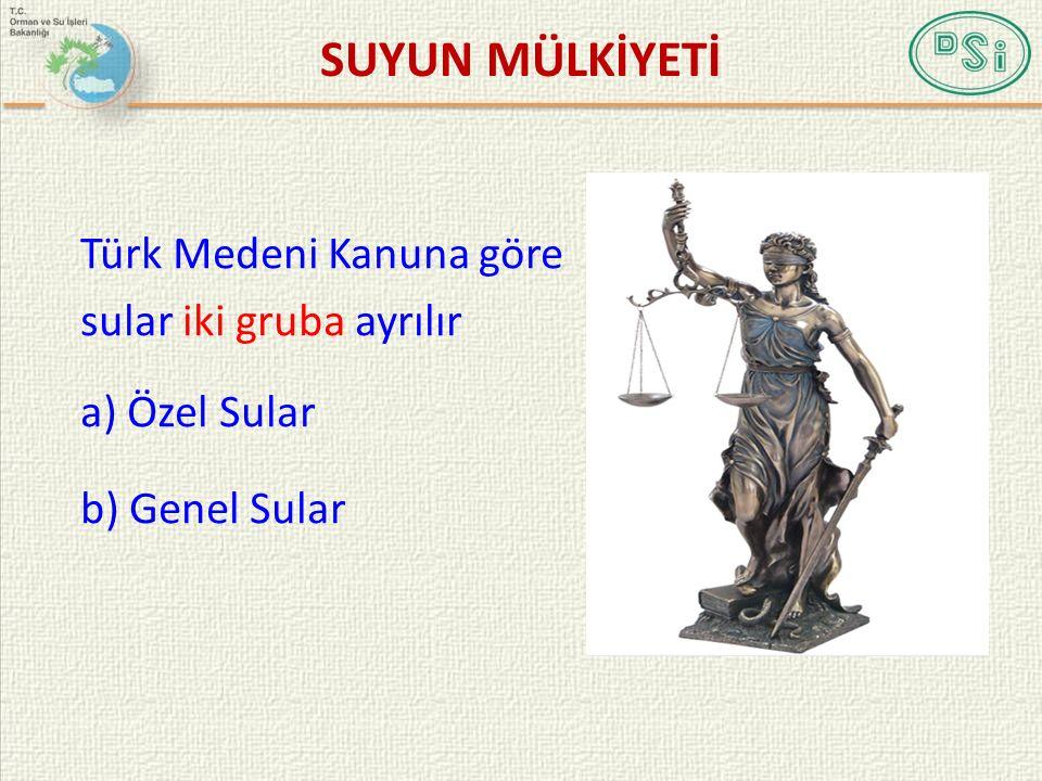 SUYUN MÜLKİYETİ Türk Medeni Kanuna göre sular iki gruba ayrılır