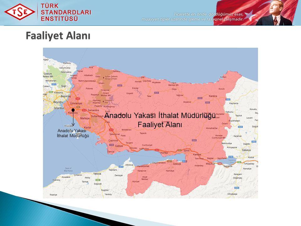 Anadolu Yakası İthalat Müdürlüğü Faaliyet Alanı