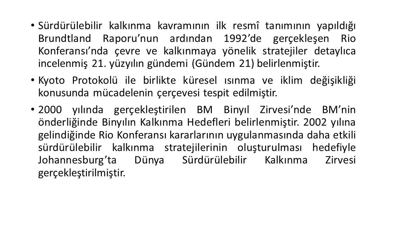 Sürdürülebilir kalkınma kavramının ilk resmî tanımının yapıldığı Brundtland Raporu'nun ardından 1992'de gerçekleşen Rio Konferansı'nda çevre ve kalkınmaya yönelik stratejiler detaylıca incelenmiş 21. yüzyılın gündemi (Gündem 21) belirlenmiştir.
