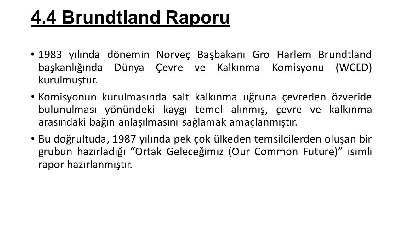 4.4 Brundtland Raporu