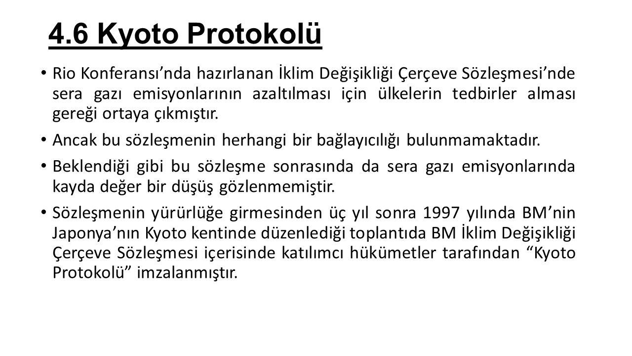 4.6 Kyoto Protokolü