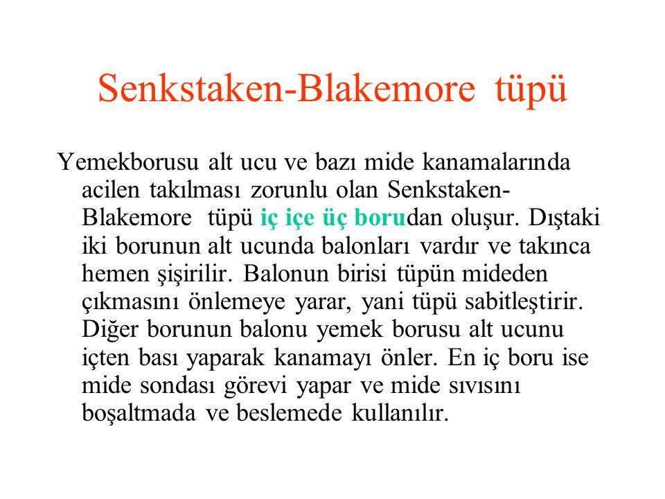 Senkstaken-Blakemore tüpü