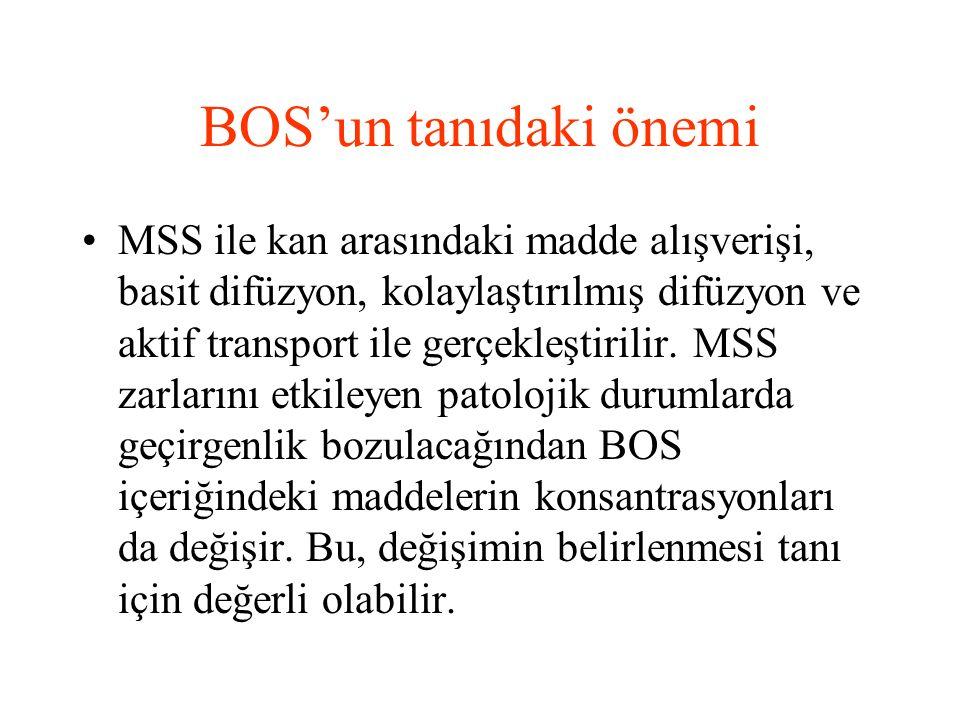 BOS'un tanıdaki önemi