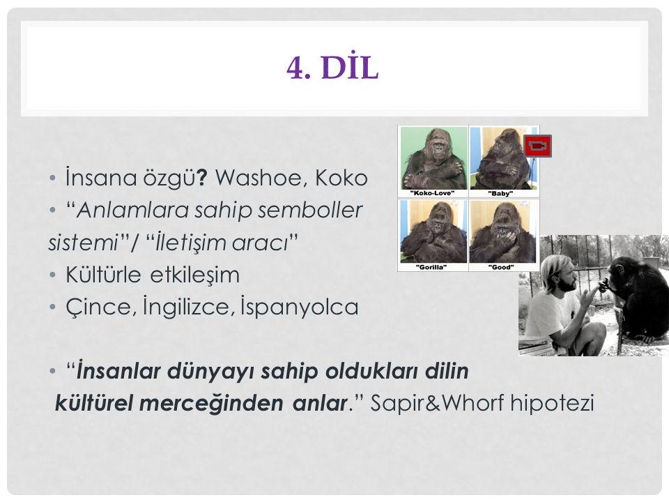 4. Dİl İnsana özgü Washoe, Koko Anlamlara sahip semboller