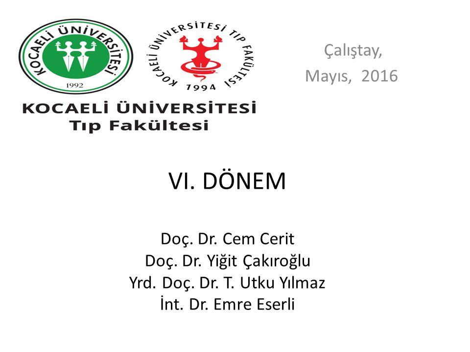 Çalıştay, Mayıs, 2016. VI. DÖNEM Doç. Dr. Cem Cerit Doç.