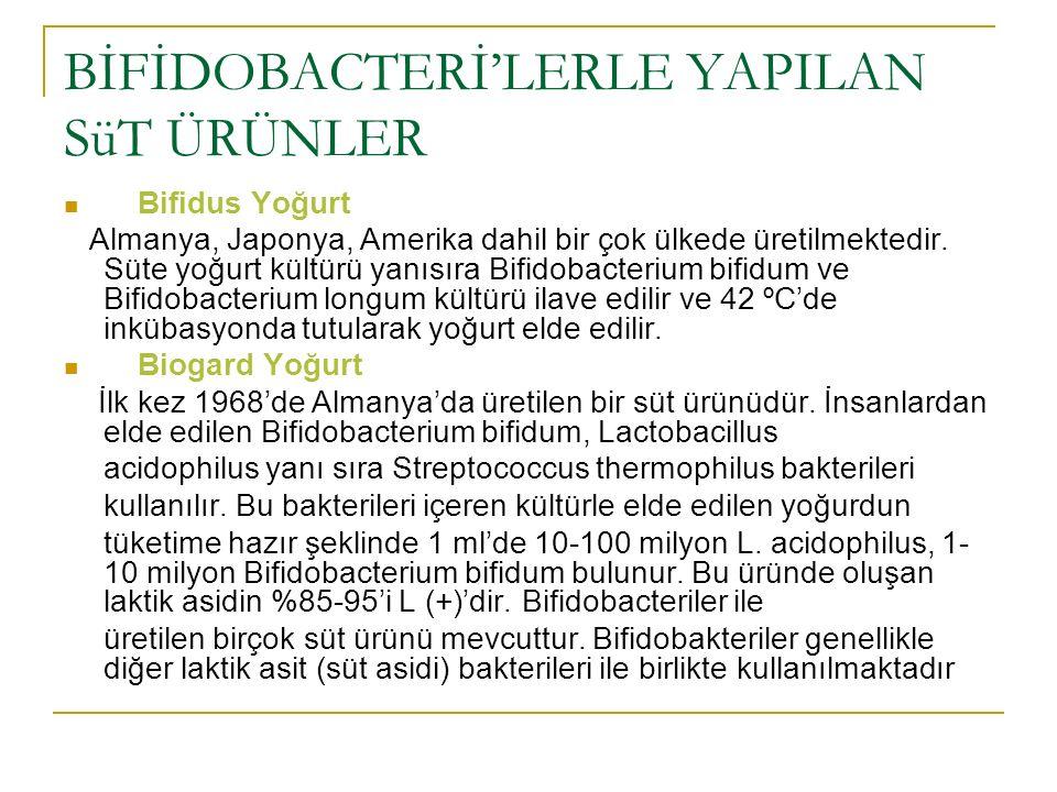 BİFİDOBACTERİ'LERLE YAPILAN SüT ÜRÜNLER