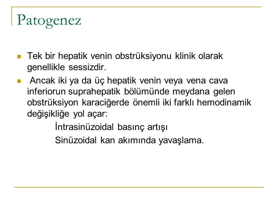 Patogenez Tek bir hepatik venin obstrüksiyonu klinik olarak genellikle sessizdir.