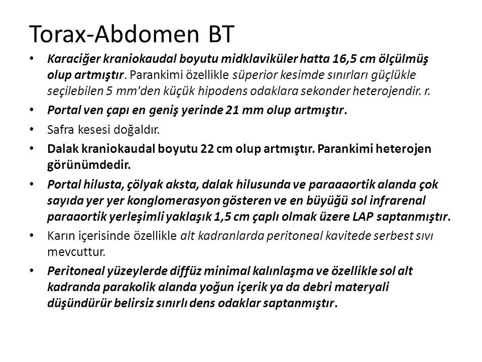 Torax-Abdomen BT
