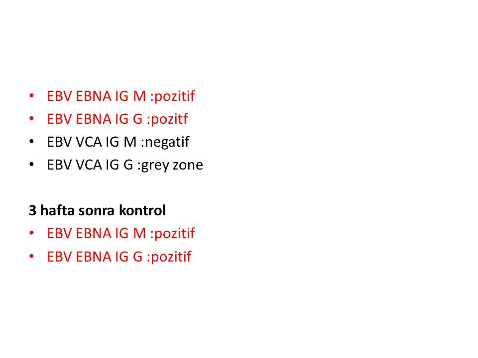 EBV EBNA IG M :pozitif EBV EBNA IG G :pozitf. EBV VCA IG M :negatif. EBV VCA IG G :grey zone. 3 hafta sonra kontrol.