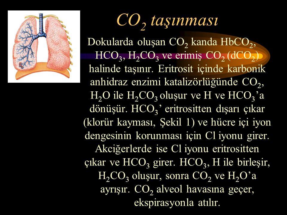 CO2 taşınması