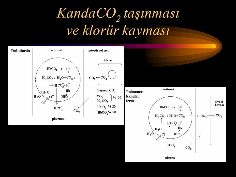 KandaCO2 taşınması ve klorür kayması