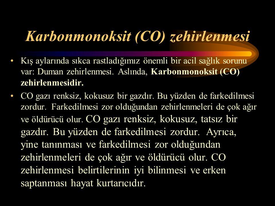 Karbonmonoksit (CO) zehirlenmesi