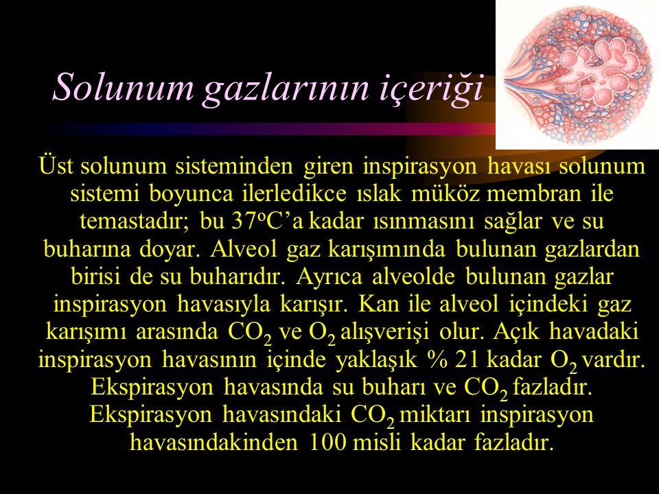Solunum gazlarının içeriği