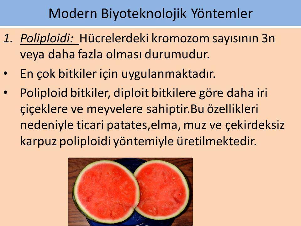 Modern Biyoteknolojik Yöntemler