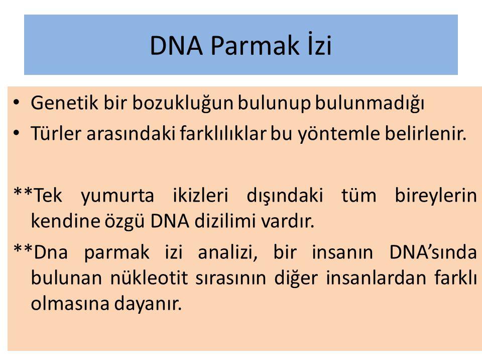 DNA Parmak İzi Genetik bir bozukluğun bulunup bulunmadığı