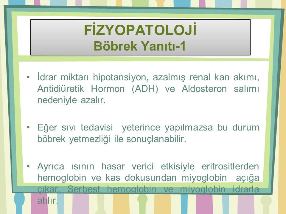 FİZYOPATOLOJİ Böbrek Yanıtı-1