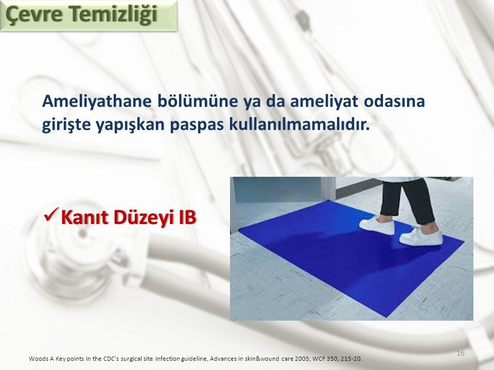 Çevre Temizliği Kanıt Düzeyi IB