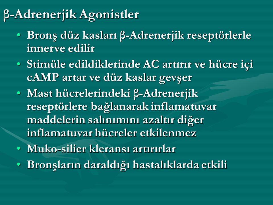 β-Adrenerjik Agonistler