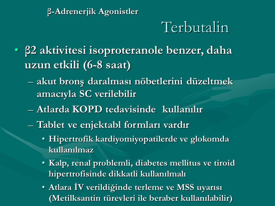 β-Adrenerjik Agonistler Terbutalin