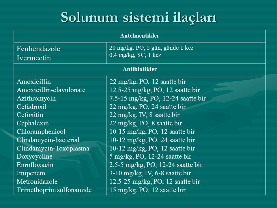 Solunum sistemi ilaçları