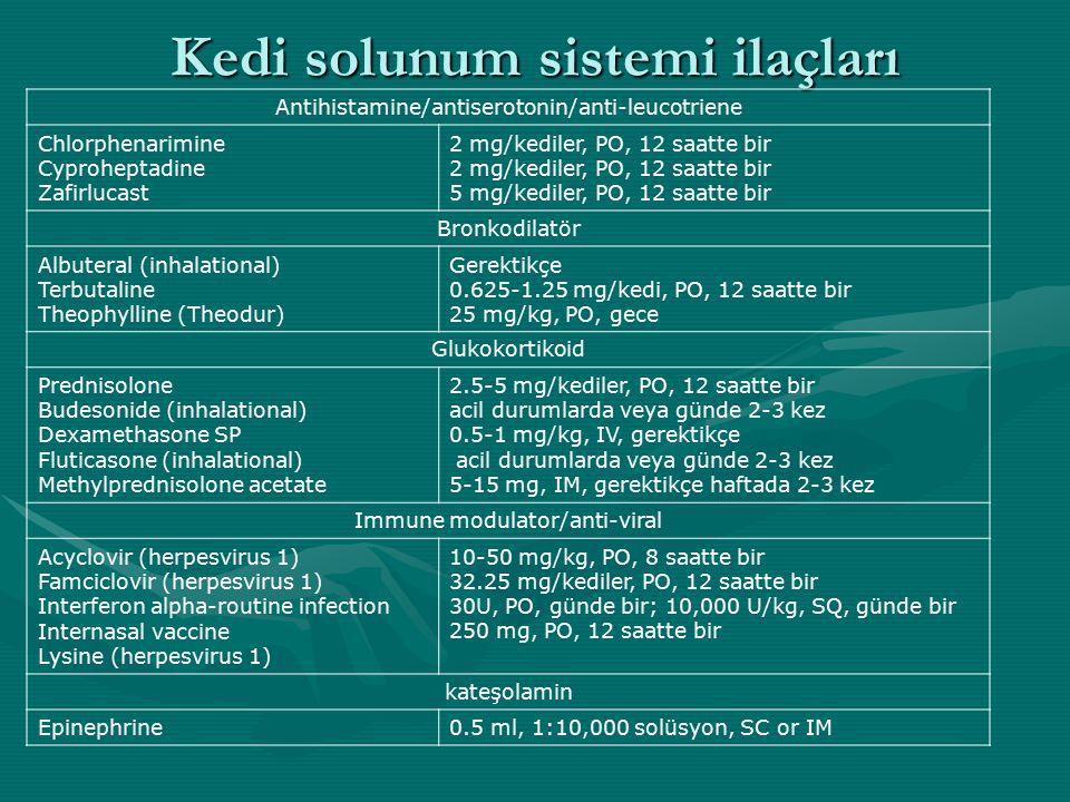 Kedi solunum sistemi ilaçları