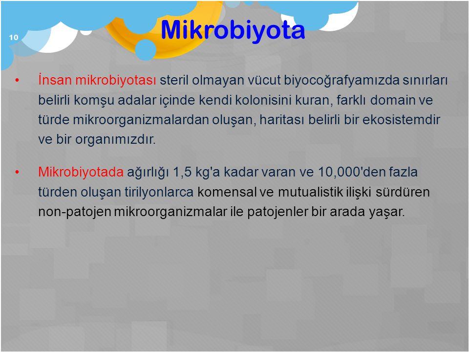 Mikrobiyota