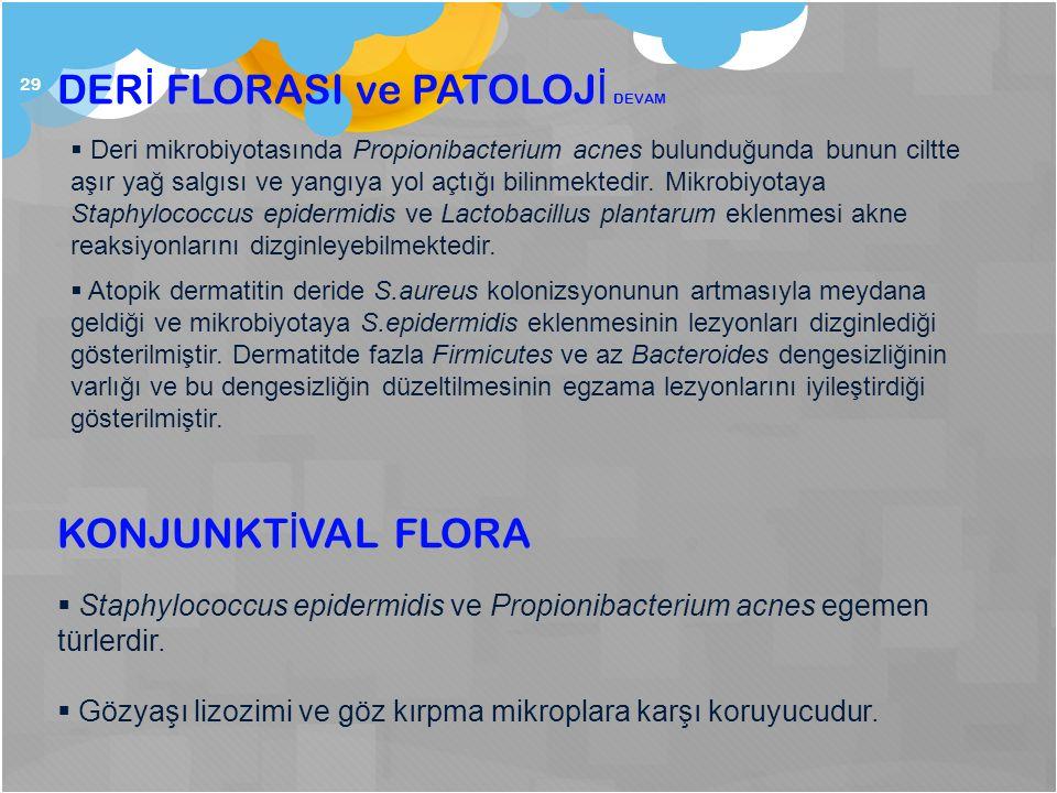 DERİ FLORASI ve PATOLOJİ DEVAM