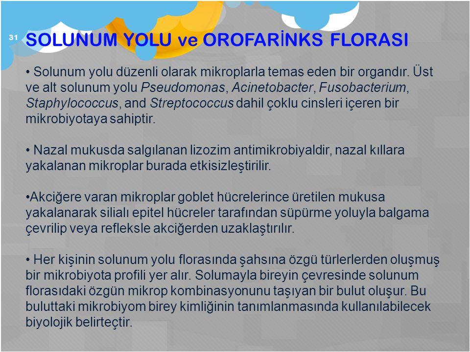 SOLUNUM YOLU ve OROFARİNKS FLORASI