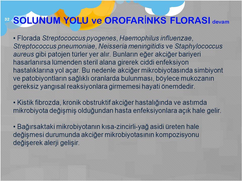 SOLUNUM YOLU ve OROFARİNKS FLORASI devam