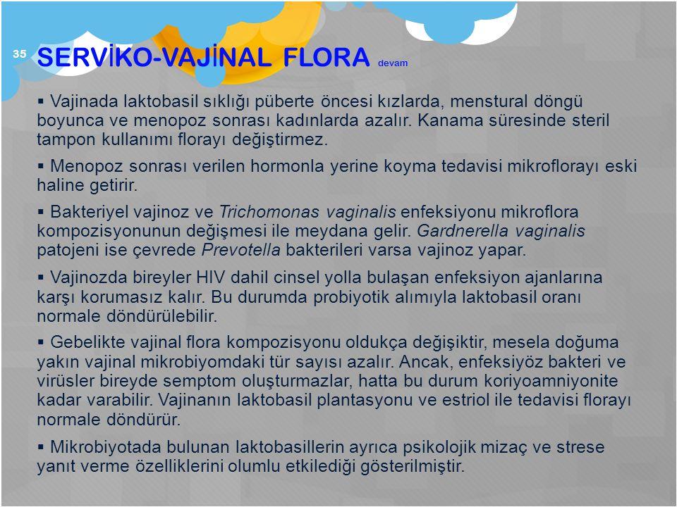 SERVİKO-VAJİNAL FLORA devam