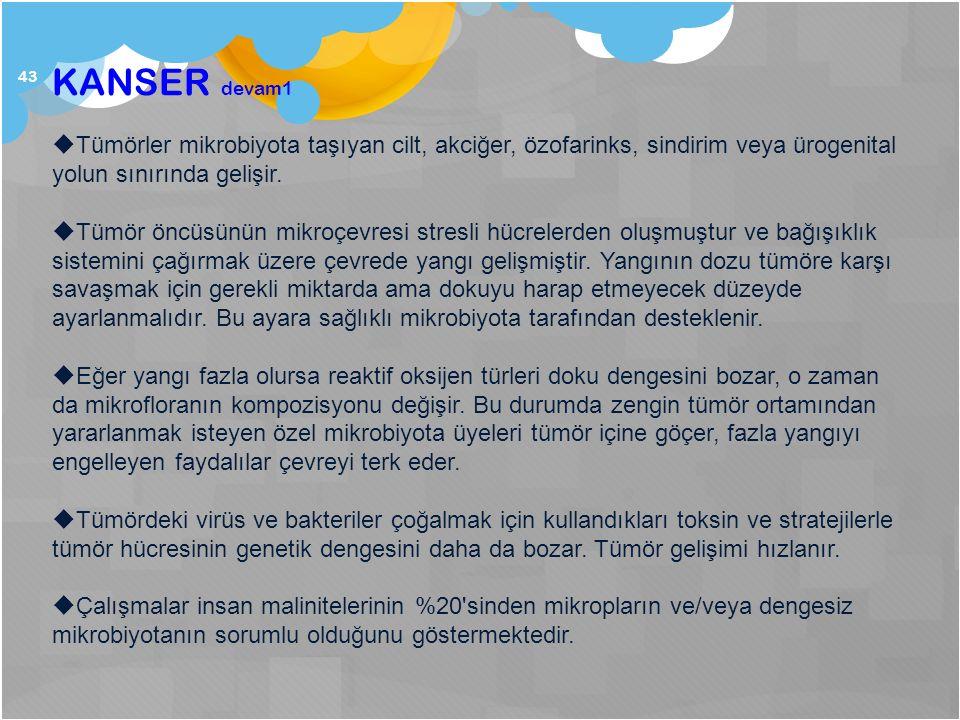 KANSER devam1 Tümörler mikrobiyota taşıyan cilt, akciğer, özofarinks, sindirim veya ürogenital yolun sınırında gelişir.