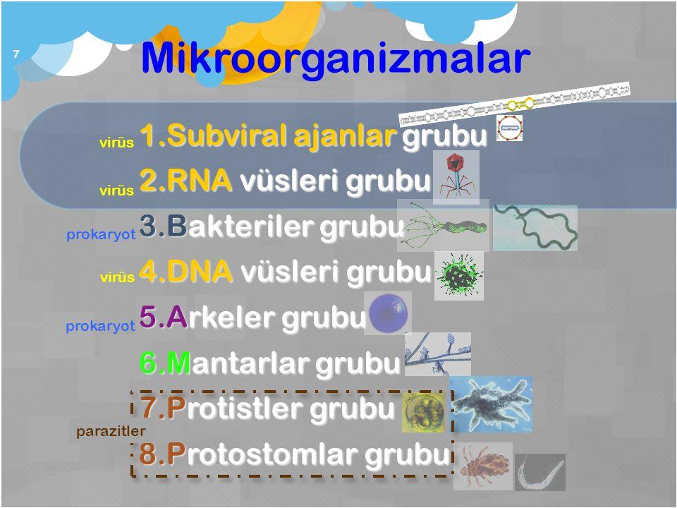 Mikroorganizmalar Subviral ajanlar grubu RNA vüsleri grubu