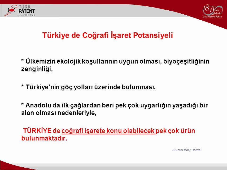 Türkiye de Coğrafi İşaret Potansiyeli
