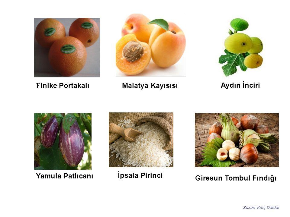 Aydın İnciri Finike Portakalı Malatya Kayısısı Yamula Patlıcanı