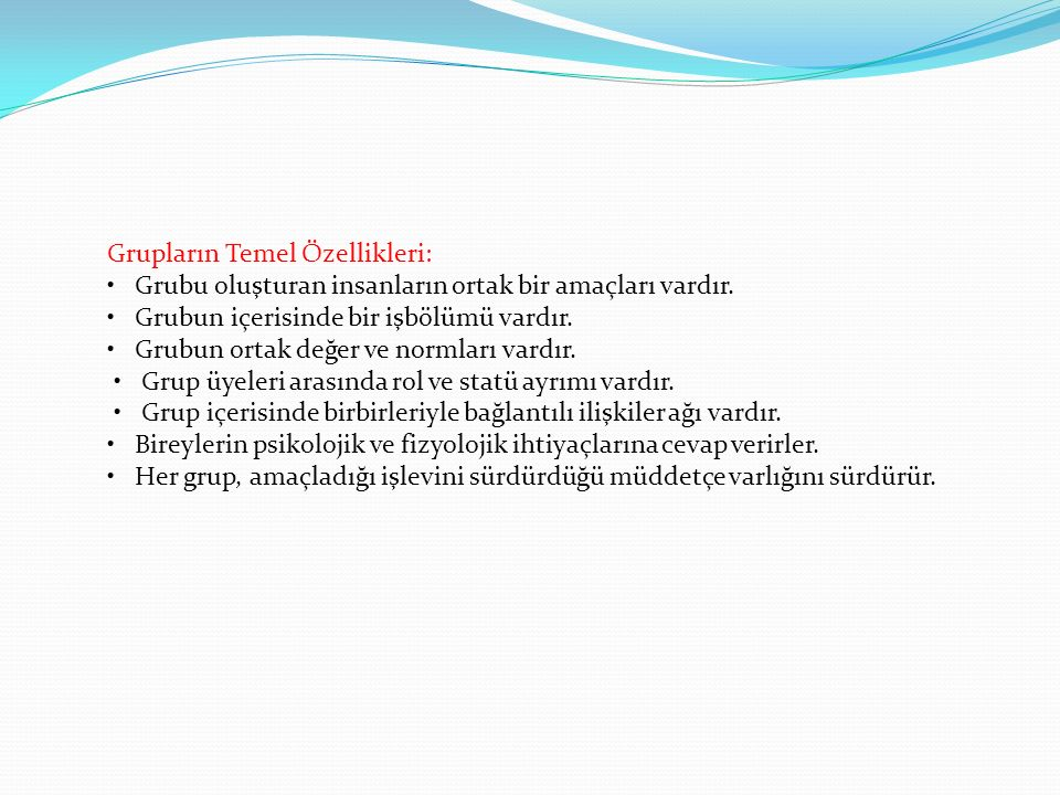 Grupların Temel Özellikleri: