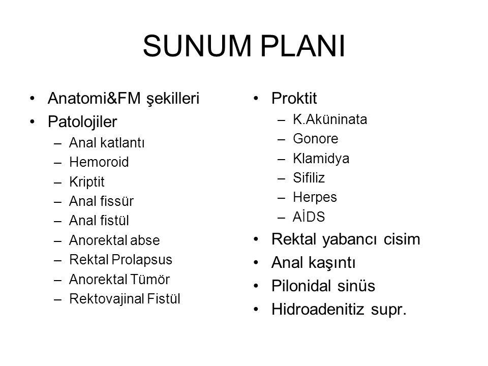 SUNUM PLANI Anatomi&FM şekilleri Patolojiler Proktit
