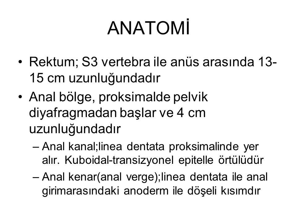 ANATOMİ Rektum; S3 vertebra ile anüs arasında 13-15 cm uzunluğundadır