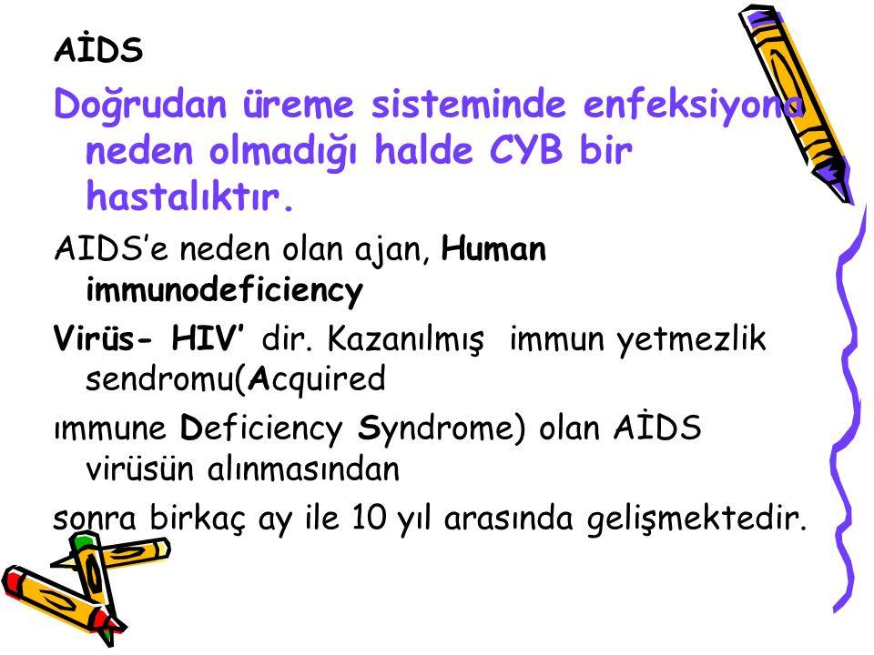 AİDS Doğrudan üreme sisteminde enfeksiyona neden olmadığı halde CYB bir hastalıktır. AIDS'e neden olan ajan, Human immunodeficiency.