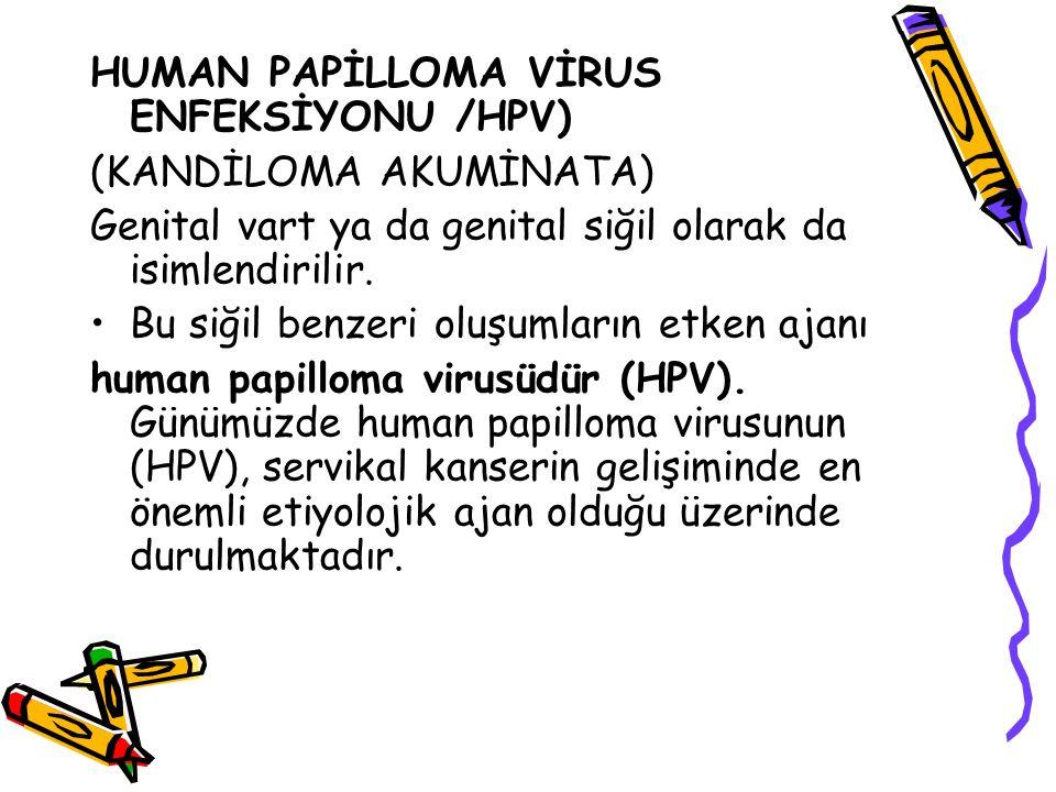 HUMAN PAPİLLOMA VİRUS ENFEKSİYONU /HPV)