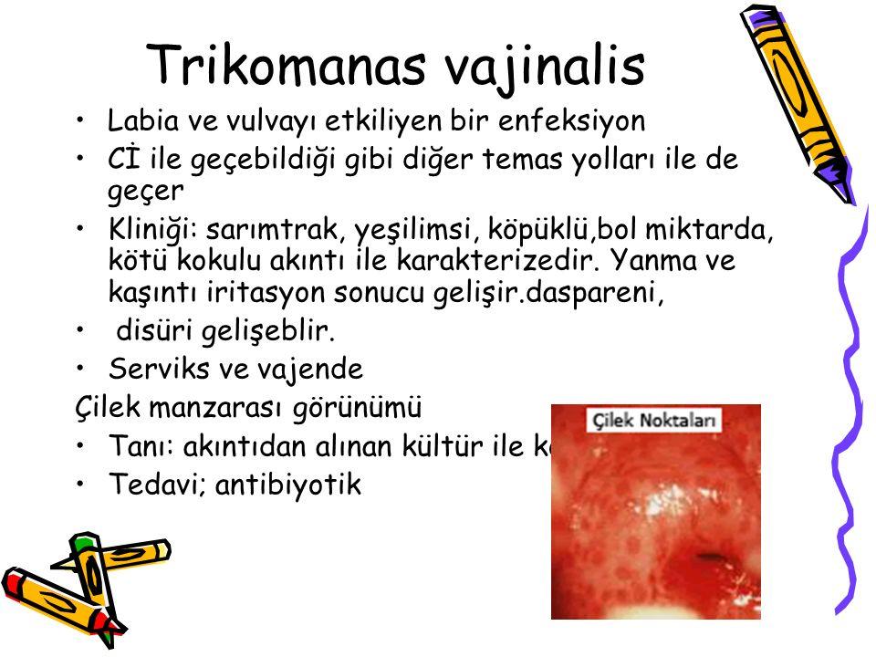 Trikomanas vajinalis Labia ve vulvayı etkiliyen bir enfeksiyon