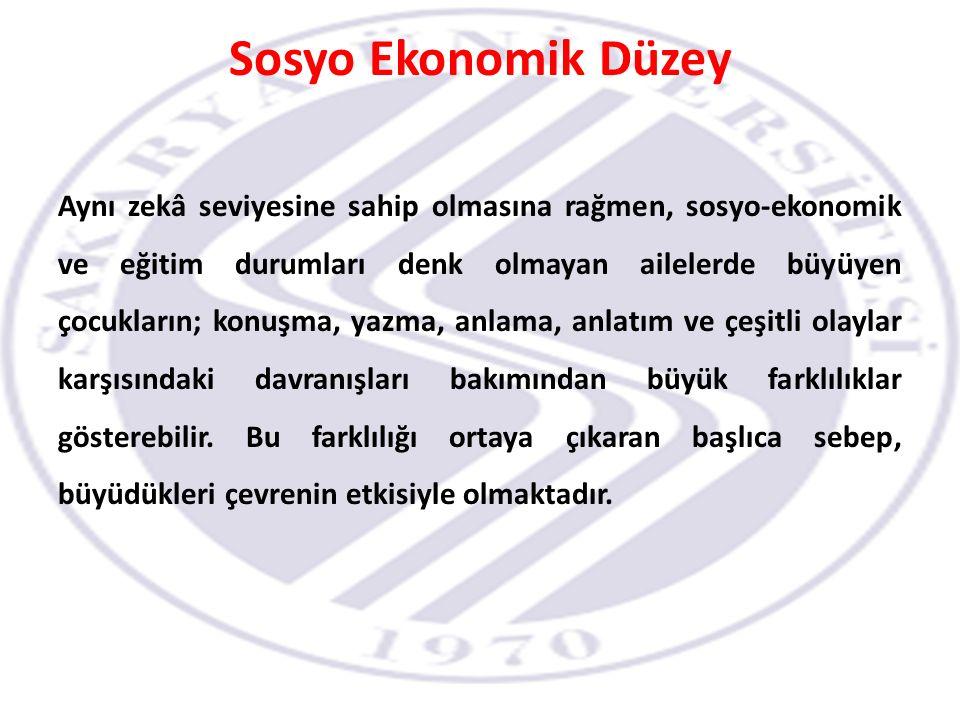 Sosyo Ekonomik Düzey