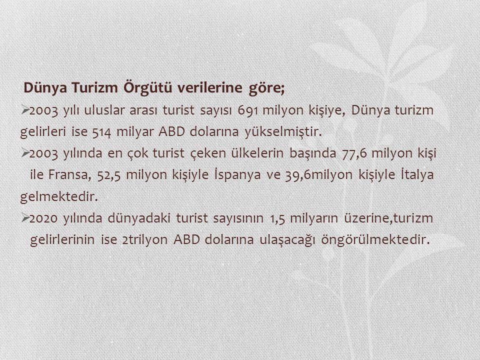 Dünya Turizm Örgütü verilerine göre;