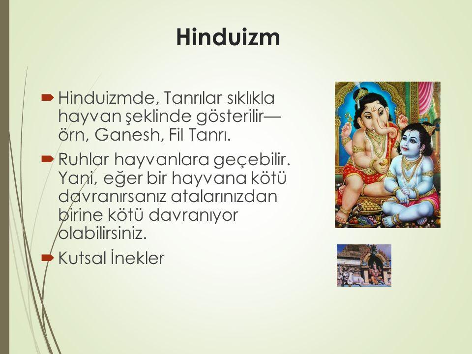 Hinduizm Hinduizmde, Tanrılar sıklıkla hayvan şeklinde gösterilir— örn, Ganesh, Fil Tanrı.